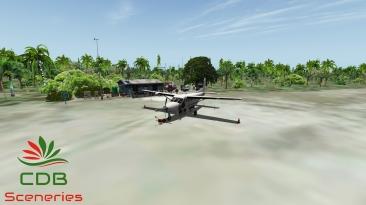 Car_C208B_1